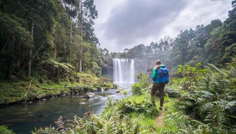 Hiker faces waterfall, Rainbow Falls or Waianiwaniwa, Kerikeri River, Northland, North Island, New Zealand_HNCGEE