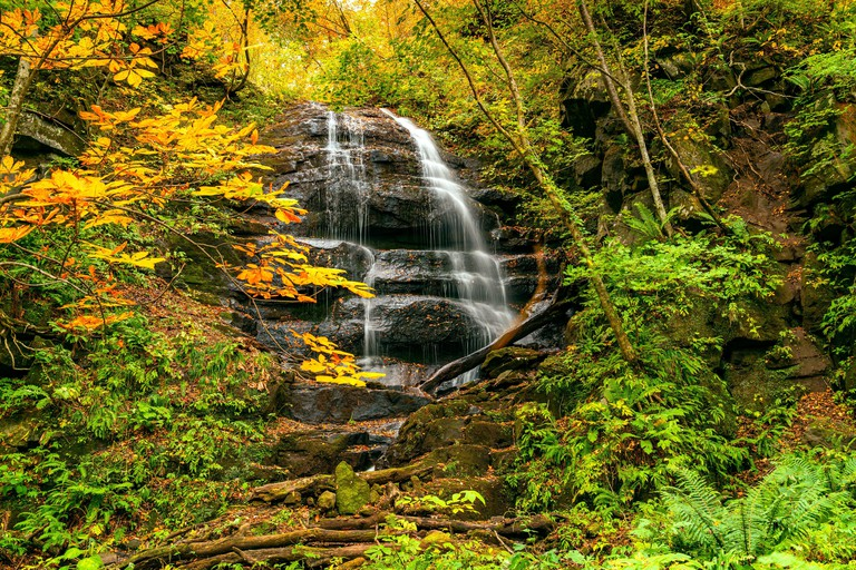 High waterfall in the colorful foliage of autumn forest at Oirase Stream Walking Trail in Oirase Gorge, Towada Hachimantai National Park_2AGEMMX
