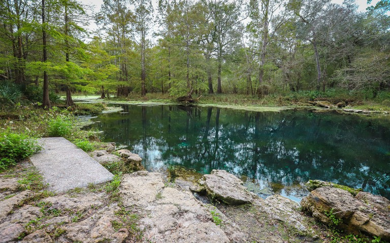LIVE OAK, FLORIDA, UNITED STATES - Oct 20, 2018: A natural warm water pool makes up one of the swimming areas inside Wes Skiles Peacock Springs State