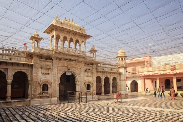 India, Rajasthan, Deshnok, Karni Mata Temple (Rat Temple)