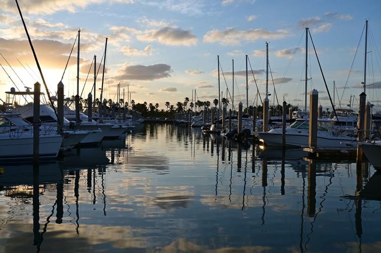 Key Biscayne, Florida - Yachts docked in Crandon Marina at sunrise on a crisp winter morning.
