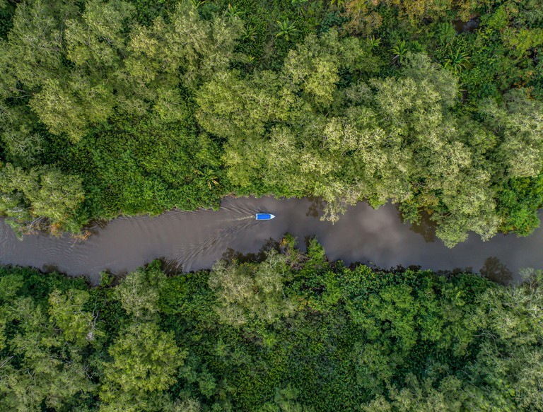 Aerial view of boat in the mangrove Rio Sierpe river in Costa Rica deep inside the jungle.