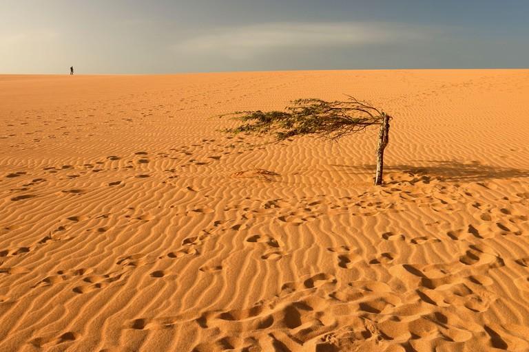 Taroa sand dunes
