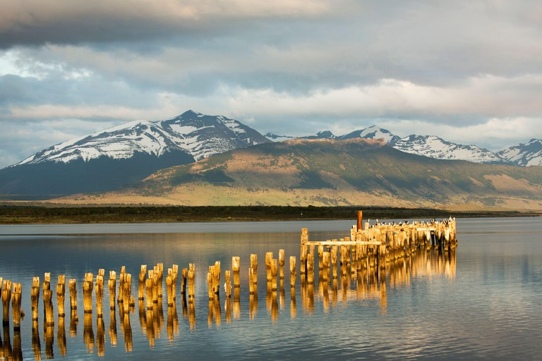 Cormorants perching on the old pillars of the ruined pier at Puerto Natales, Patagonia, Chile, with Torres del Paine in the distance