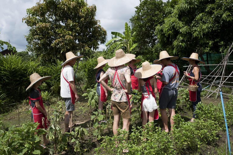 Tourists wearing farmer's hat having a tour on the vegetable garden, during a thai food kitchen class, Chang Mai.
