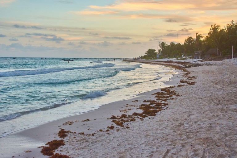 Wonderful view of Xpu-Ha Beach in Mexico during sunset