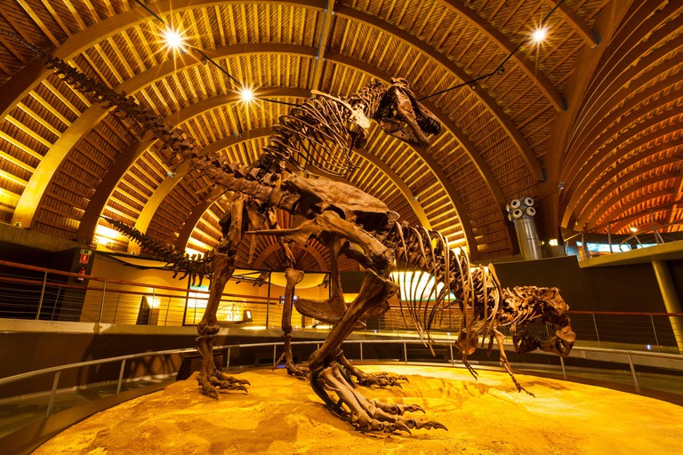 Jurassic Museum of Asturias, Colunga Council, Asturias, Spain, Europe
