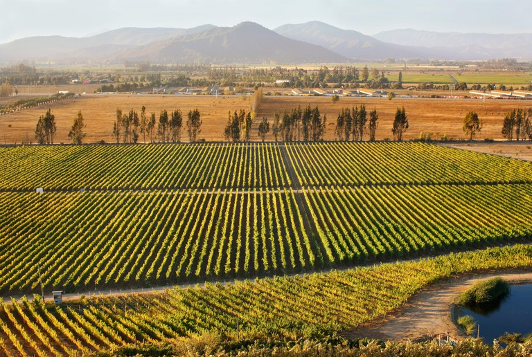 Wine Valleys, Chile, South America