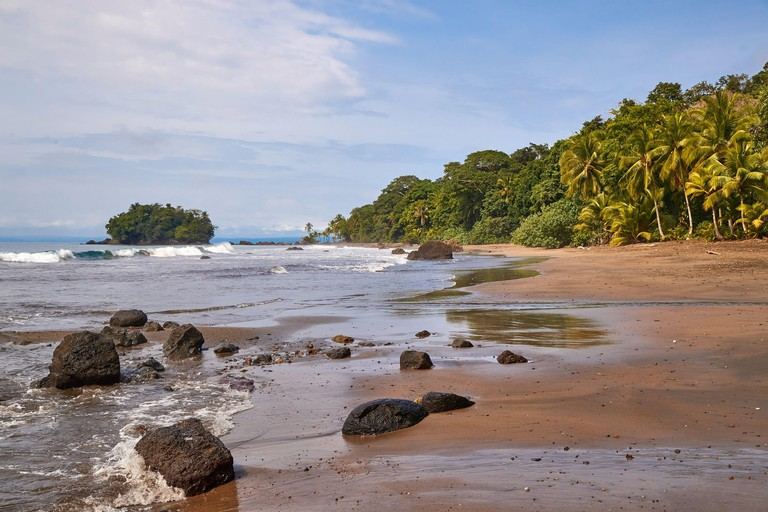 Palm trees and sandy beach on the Pacific Ocean shore in Choco, Colombia, near Nuqui