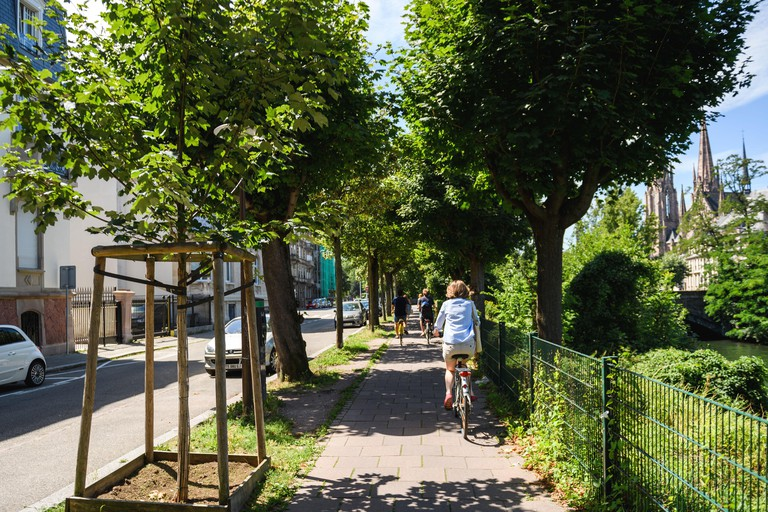 Strasbourg, France - July 29, 2017: Rear view of single woman cycling on the French street with tall green trees and Church in background