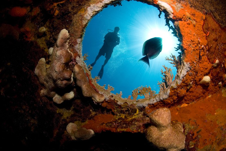 Male scuba diver is viewed through the underwater porthole of the HMS Endymion shipwreck..