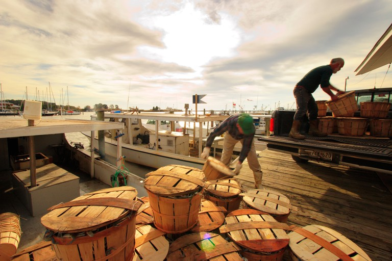 Loading Blue Crabs in baskets on dock, Rock Hall, Maryland, USA