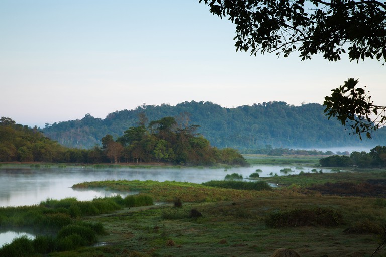 Early morning view of Crocodile Swamp deep inside Cat Tien National Park.