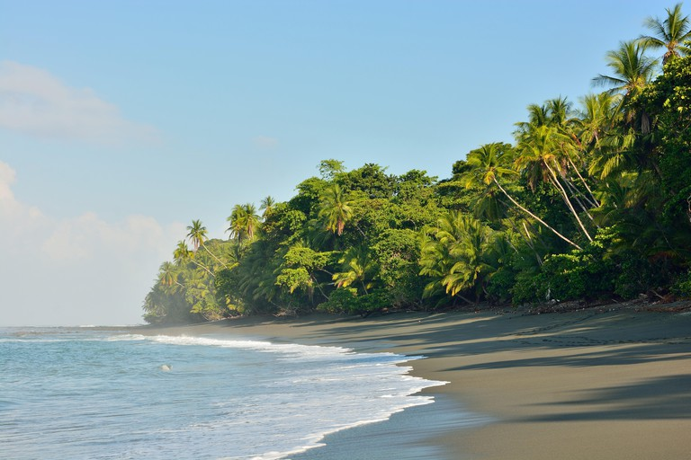 Beach in the Corcovado National Park of Costa Rica