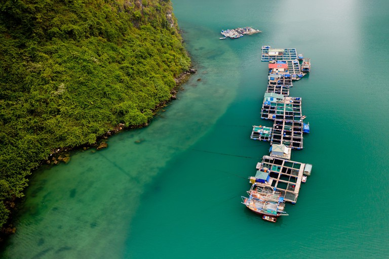 Floating Village - Ha Long Bay, Ha Long, Vietnam