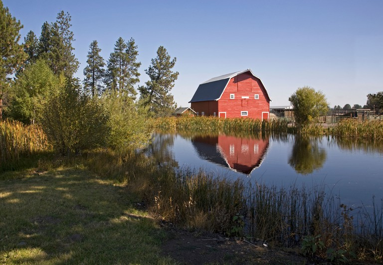 An old red barn reflected in a farm pond in Sisters, Oregon