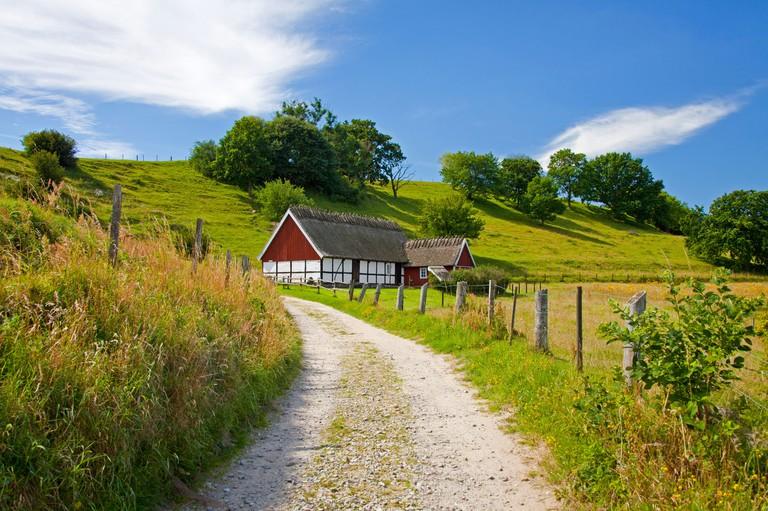 Traditional farmhouse with thatched roof at Brosarp backar / Broesarp Hills, Havang, Skane, Sweden