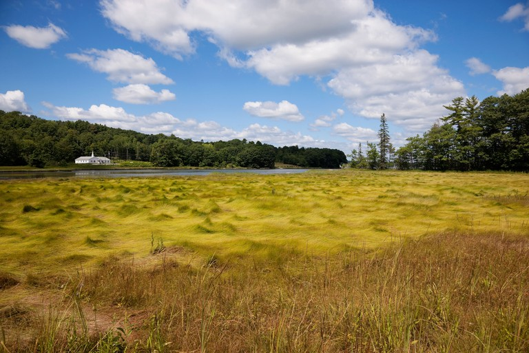 Damariscotta-Lake-State-Park_GettyImages-486105956