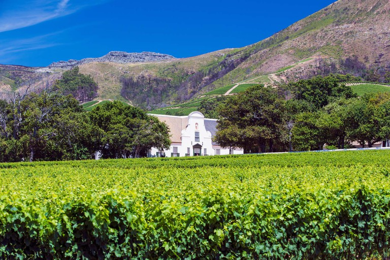 The main manor house and vineyards of Groot Constantia in Cape Town, South Africa