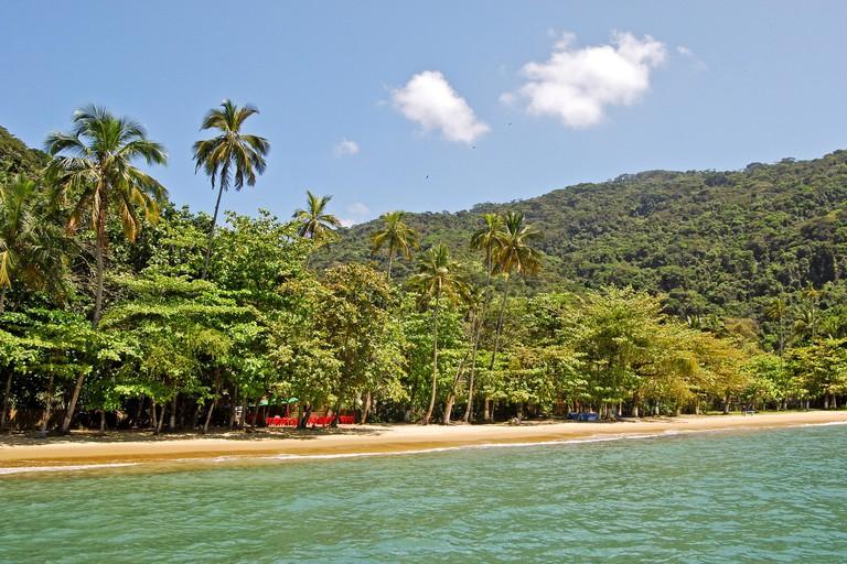 Ilha Grande Island: Beach Praia Lopes Mendes, Rio de Janeiro state, Brazil South America