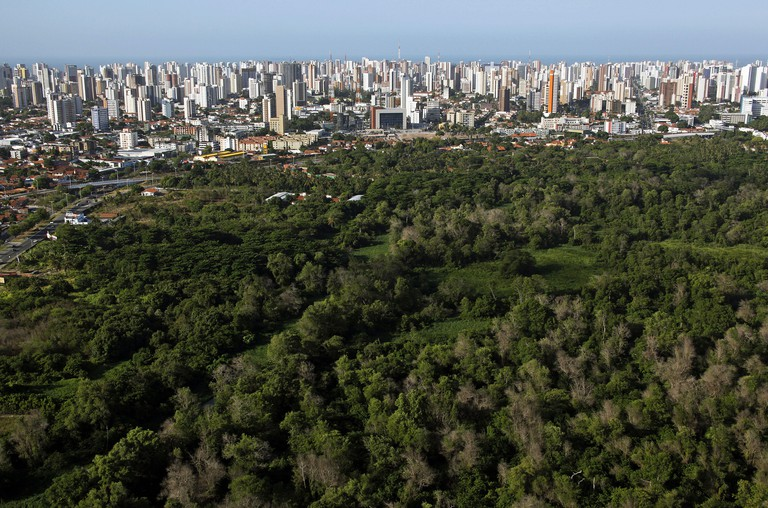 Aerial view of the Rio Coco Ecological Park and the city of Fortaleza in the background.