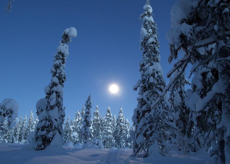 Urho Kekkonen National Park in Lapland Finland
