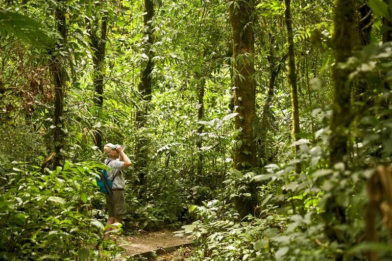 A male hiker looking through binoculars in Monteverde Cloud Forest, Costa Rica