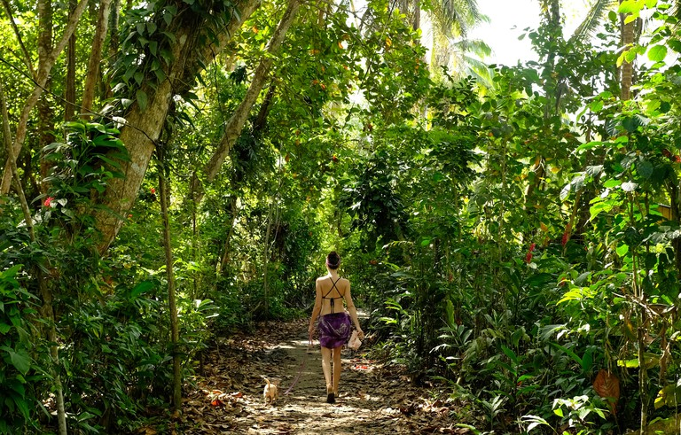 A woman and her dog walk through the palm trees on Playa Chiquita on Costa Rica's Caribbean Coast.