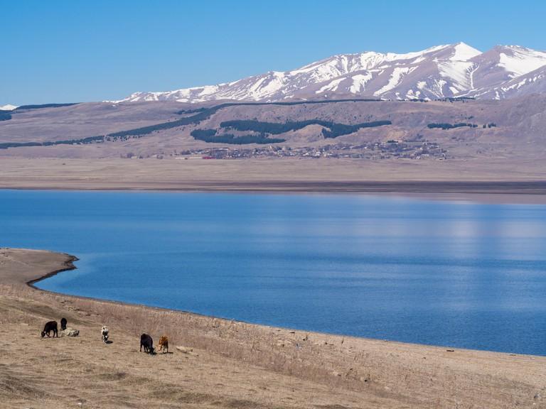Paravani lake in Javakheti Plateau in Georgia, Caucasus.