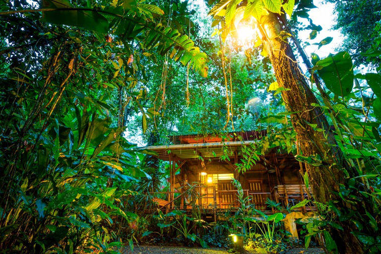 Puerto Viejo De Talamanaca, Limon, Costa Rica, Central America. Eco Lodge in the jungle with girl looking at the forest.