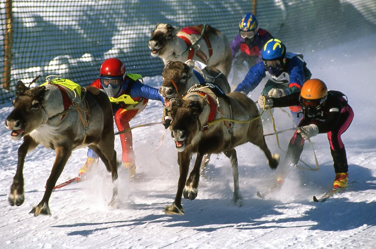 reindeer races festival at Inari in the Arctic Circle in Lappland Finland Europe. Image shot 1999. Exact date unknown.