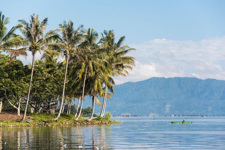 Fisherman and palm trees, Lake Toba (Danau Toba), North Sumatra, Indonesia, Asia 2DC99GB