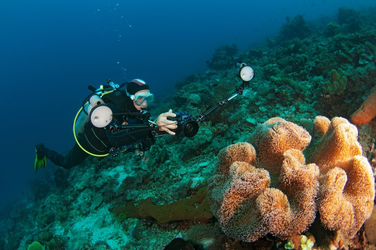 A photographer taking picture of mushroom leather coral, Atauro Island, near Dili, East Timor.