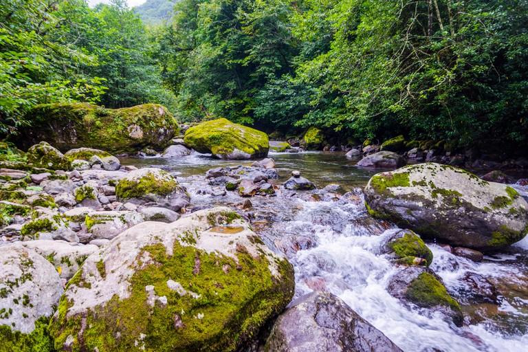 Chakvistskali river in Mtirala national park, Georgia