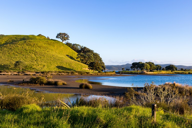 View from a trail at the Tawharanui Regional Park, in New Zealand.
