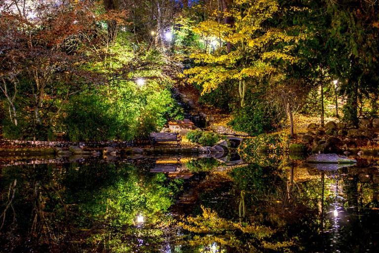 Nighttime view of reflecting pool in LIthia Park, Ashland, Oregon