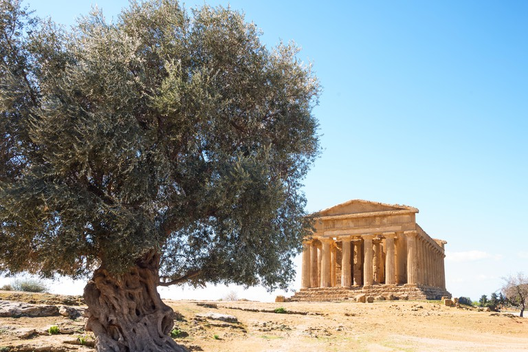 Italy, Sicily island, the valley of the temples of Agrigento, view of the temple of Concordia