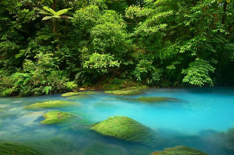 Rio Celeste river in the Tenorio Volcano National Park, Costa Rica, Central America