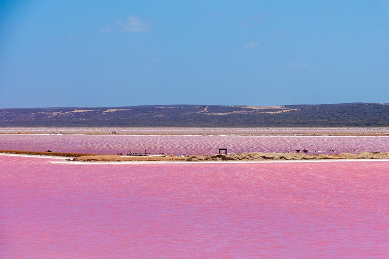 Different parts of the Pink Lake next to Gregory in West Australia