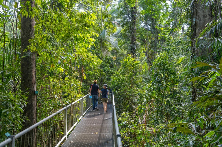 Daintree, Queensland. Visitors on the boardwalk in the Discovery Centre, Daintree Rainforest, Daintree National Park, Queensland, Australia