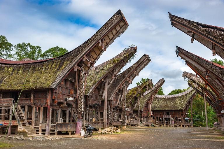 Tongkonan houses, Sulawesi, Indonesia. Image shot 01/2020. Exact date unknown.