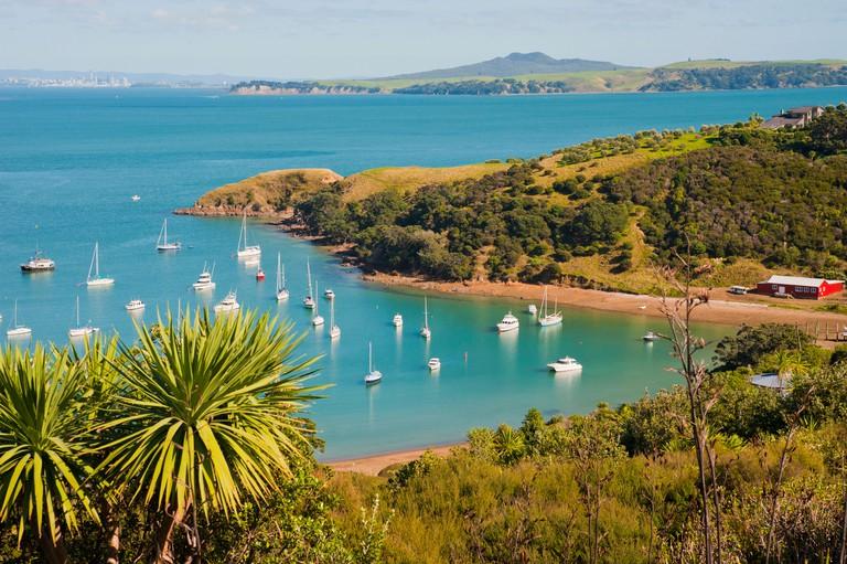 Sailing boats on Waiheke Island, Auckland, North Island, New Zealand