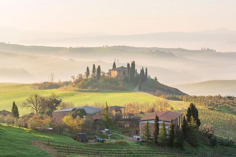 Sunrise over Val D'Orcia, near San Quirico d'Orcia, Siena, Tuscany, Italy