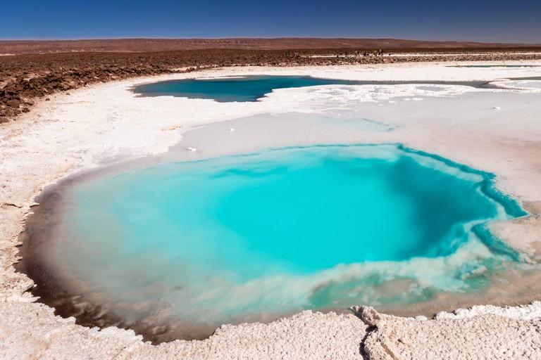Hidden lagoon Baltinache (Lagunas escondidas Baltinache) Atacama Desert, Chile. South America.