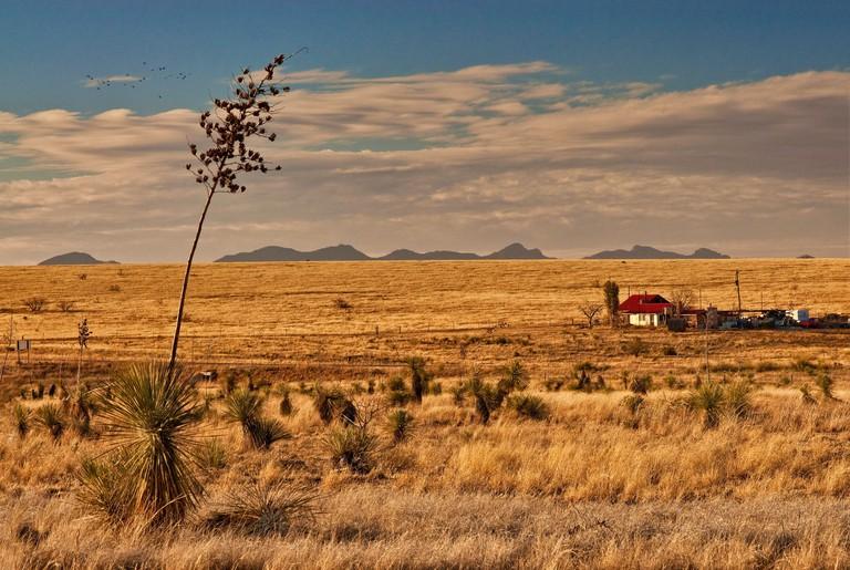 Ranch in Las Cienegas National Conservation Area, Sonoran Desert , Whetstone Mountains in far distance, Upper Elgin Road near Elgin, Arizona, USA