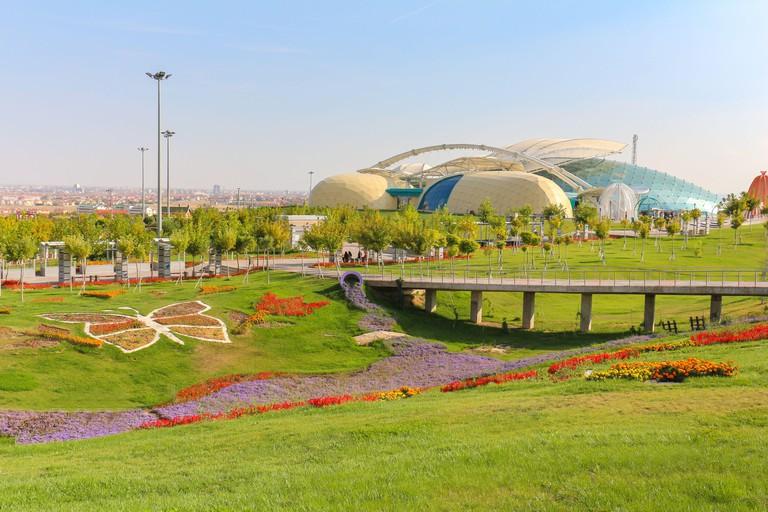 Tropical Butterfly Garden in Konya Turkey.
