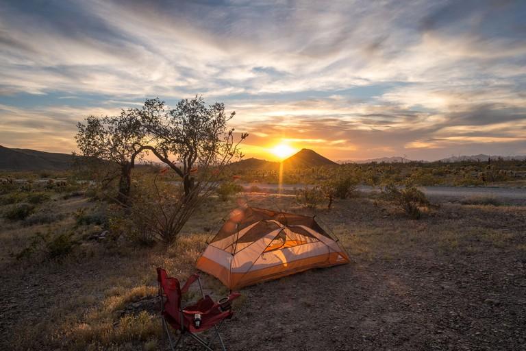 Orange tent at Palm Canyon in the Kofa National Wildlife Refuge, Arizona, USA