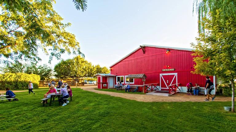 Blazin' M Ranch Cottonwood Arizona