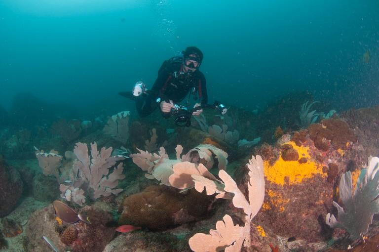 Recreational scuba divers at Arraial do Cabo, Rio de Janeiro state, Brazil. Image shot 2011. Exact date unknown.