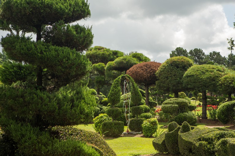 Fryar's Topiary Gardens
